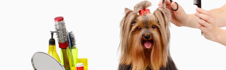 Natalia's Pet Beauty Salon